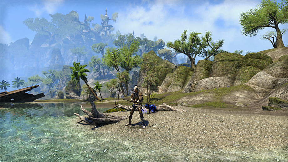 Elder Scrolls Online Gameplay Screenshot